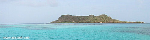 Saline island (Carriacou)