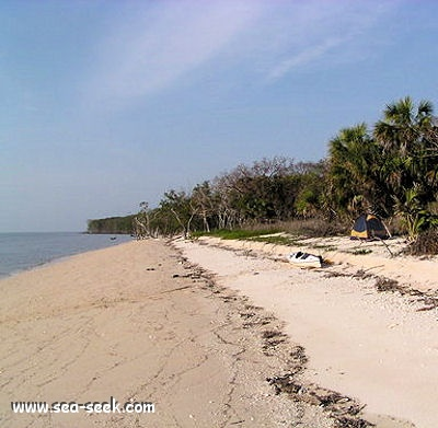 Cape Sable (Florida)