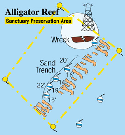 Alligator Reef (Upper Matecumbe)
